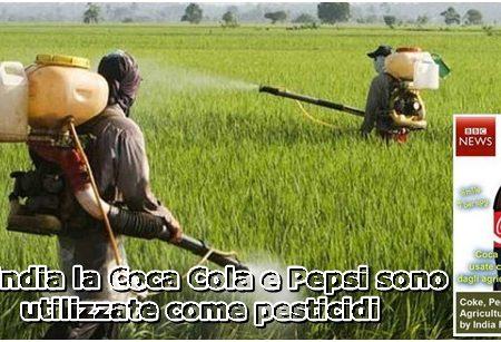 In India la Coca Cola e Pepsi sono utilizzate come pesticidi