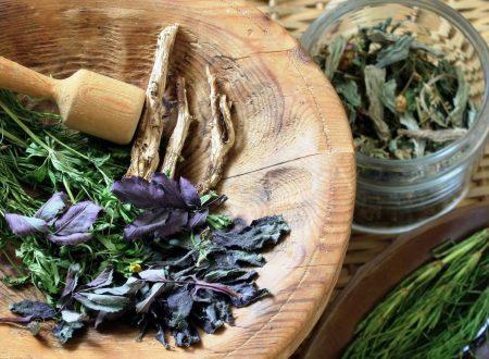 Due miracolose piante bibliche efficaci contro l'Alzheimer