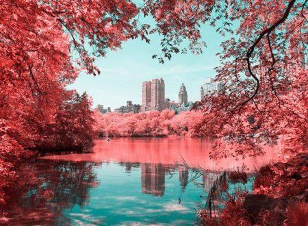 Il cromatismo surreale di New York nelle foto di Paolo Pettigiani