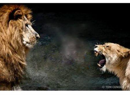 Ecco i 5 metodi più efficaci per affrontare una persona aggressiva