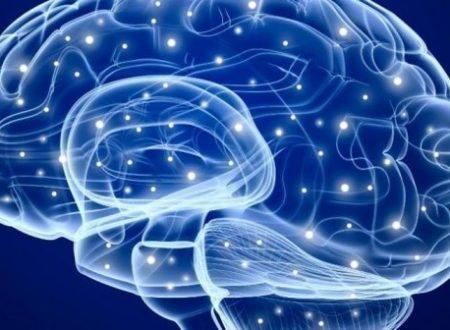 """Epilessia: quando il cervello non riesce più a """"pulire"""" via le sue scorie"""