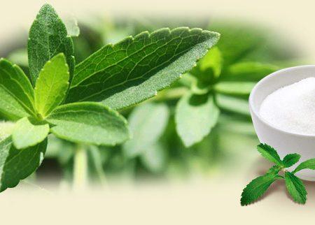 Stevia: proprietà e controindicazioni del dolcificante naturale.