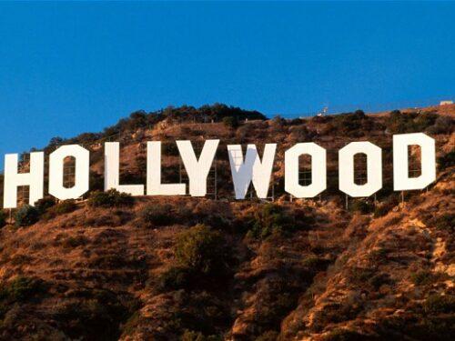 Aboliamo il suffragio universale, che votino solo gli intellettuali, gli organi d'informazione mondialisti e le grandi Star di Hollywood