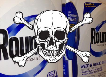 """MA QUALE CELIACHIA – Chiamatela Roundup – Sono 12 mila anni che l'umanità si nutre di frumento senza problemi, ma ecco di colpo l'emergenza """"intolleranza al glutine"""" …le cause? Chiedetele alla Monsanto!"""