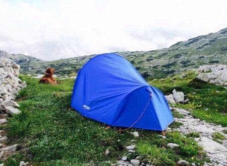 """""""Un viaggio, un uomo, un cane"""": un inno alla vita e alla lentezza"""